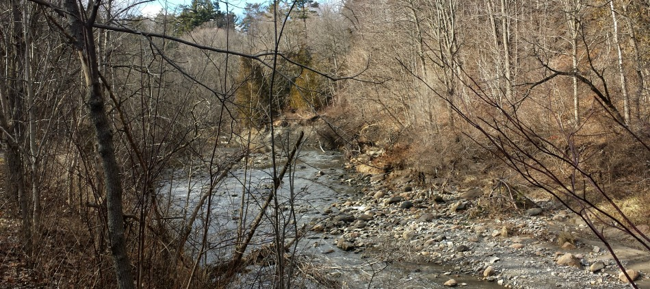 Scarborough's Highland CreekWatershed